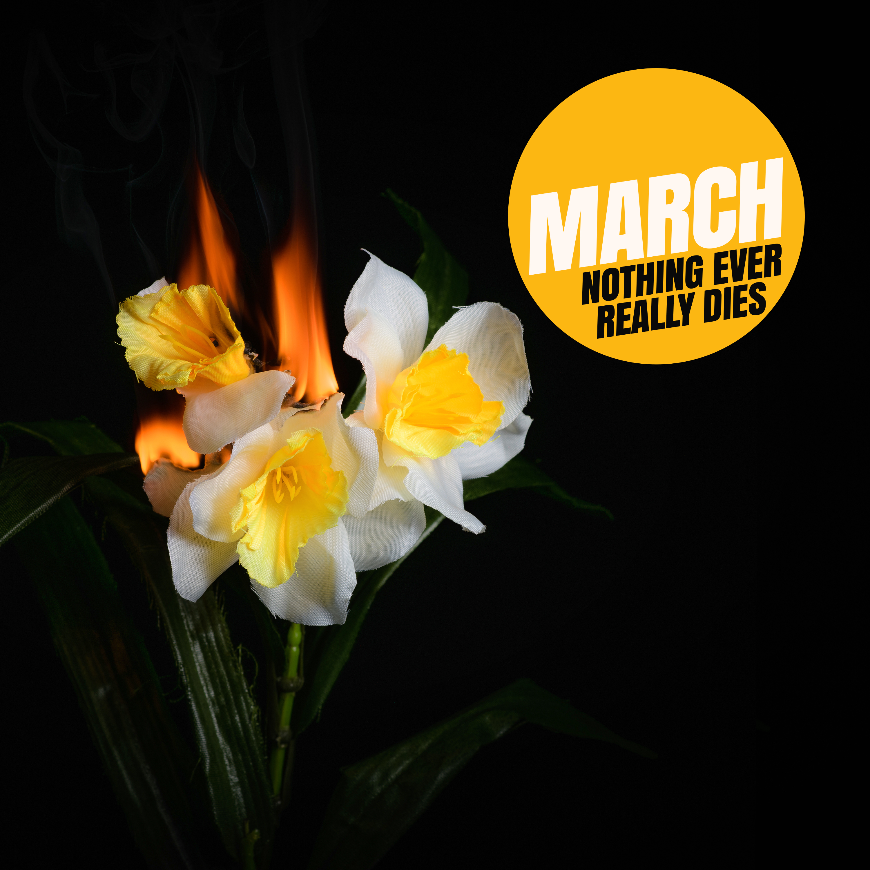 MARCH - Nothing ever really dies - cover